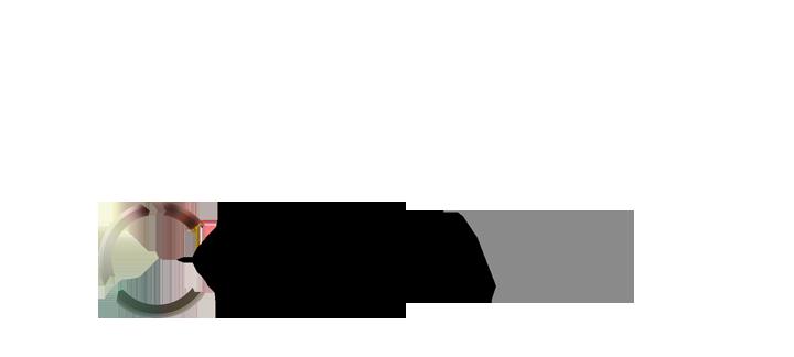 Chroma VX logo